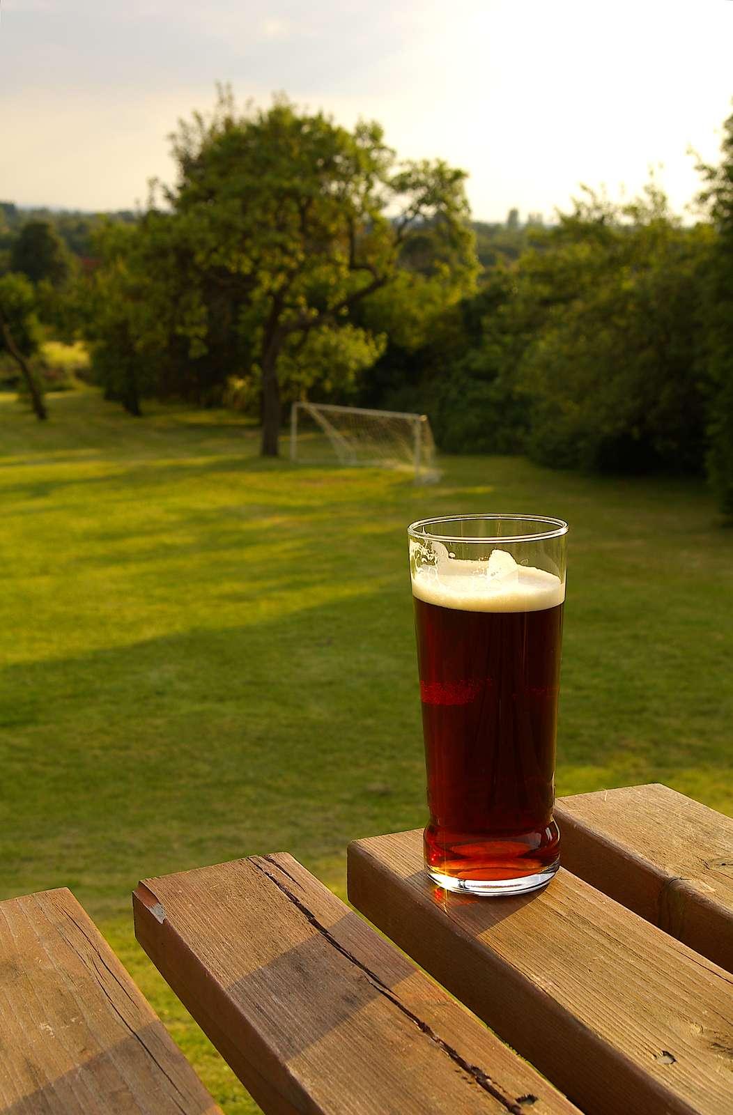 Beer Garden Season Is Here Wisconsin Independent