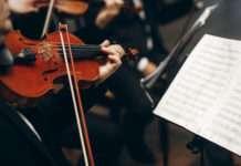 Violinist Plays Music